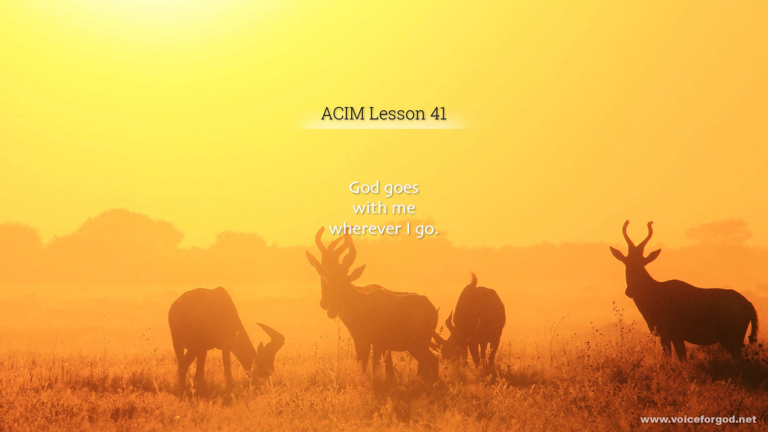 ACIM Lesson 41 - A Course in Miracles Workbook Lesson 41