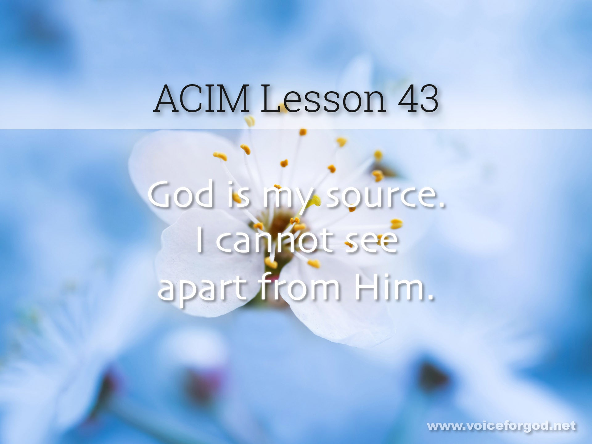 ACIM Lesson 43 - A Course in Miracles Workbook Lesson 43