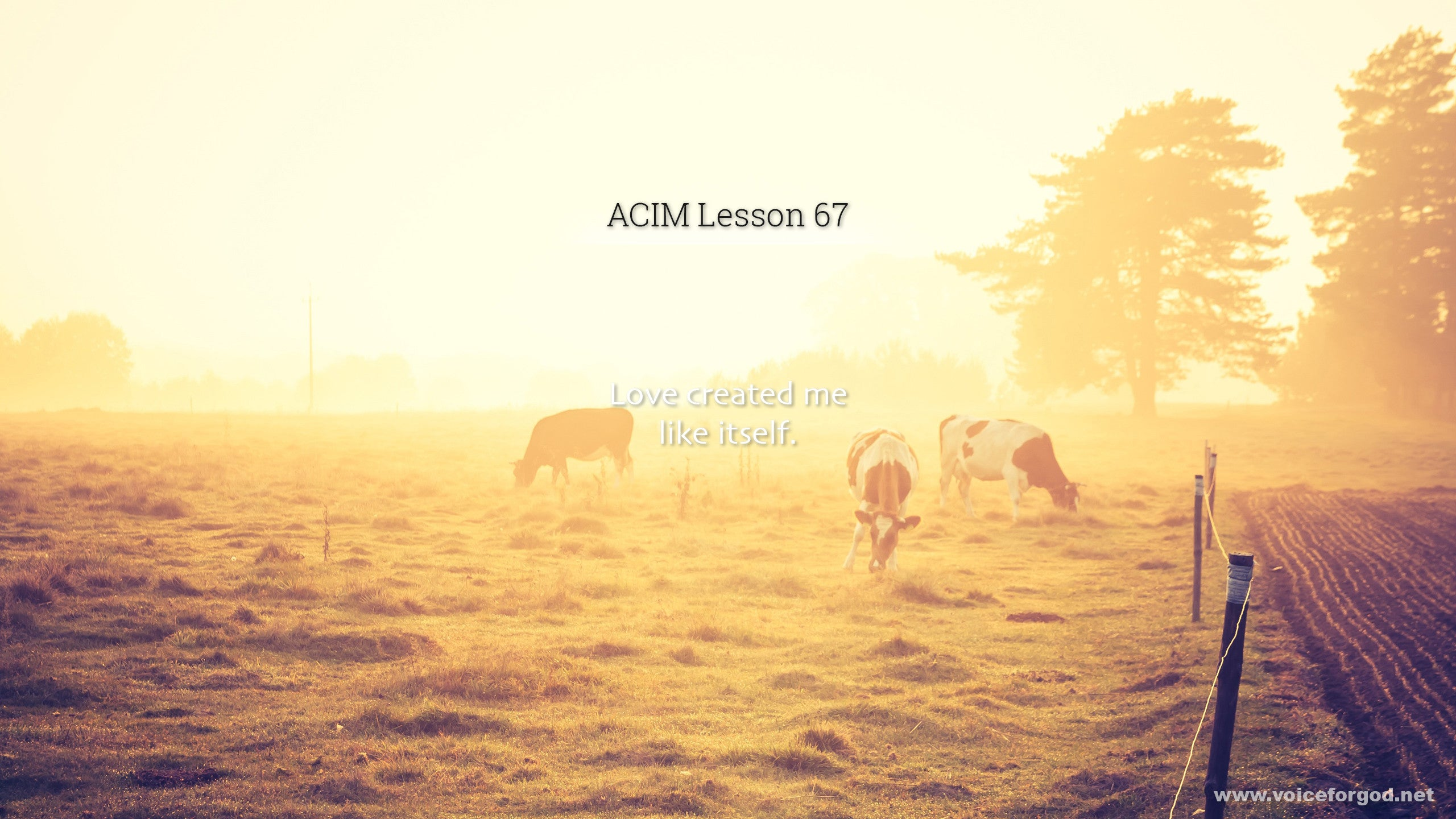 ACIM Lesson 67 - A Course in Miracles Workbook Lesson 67