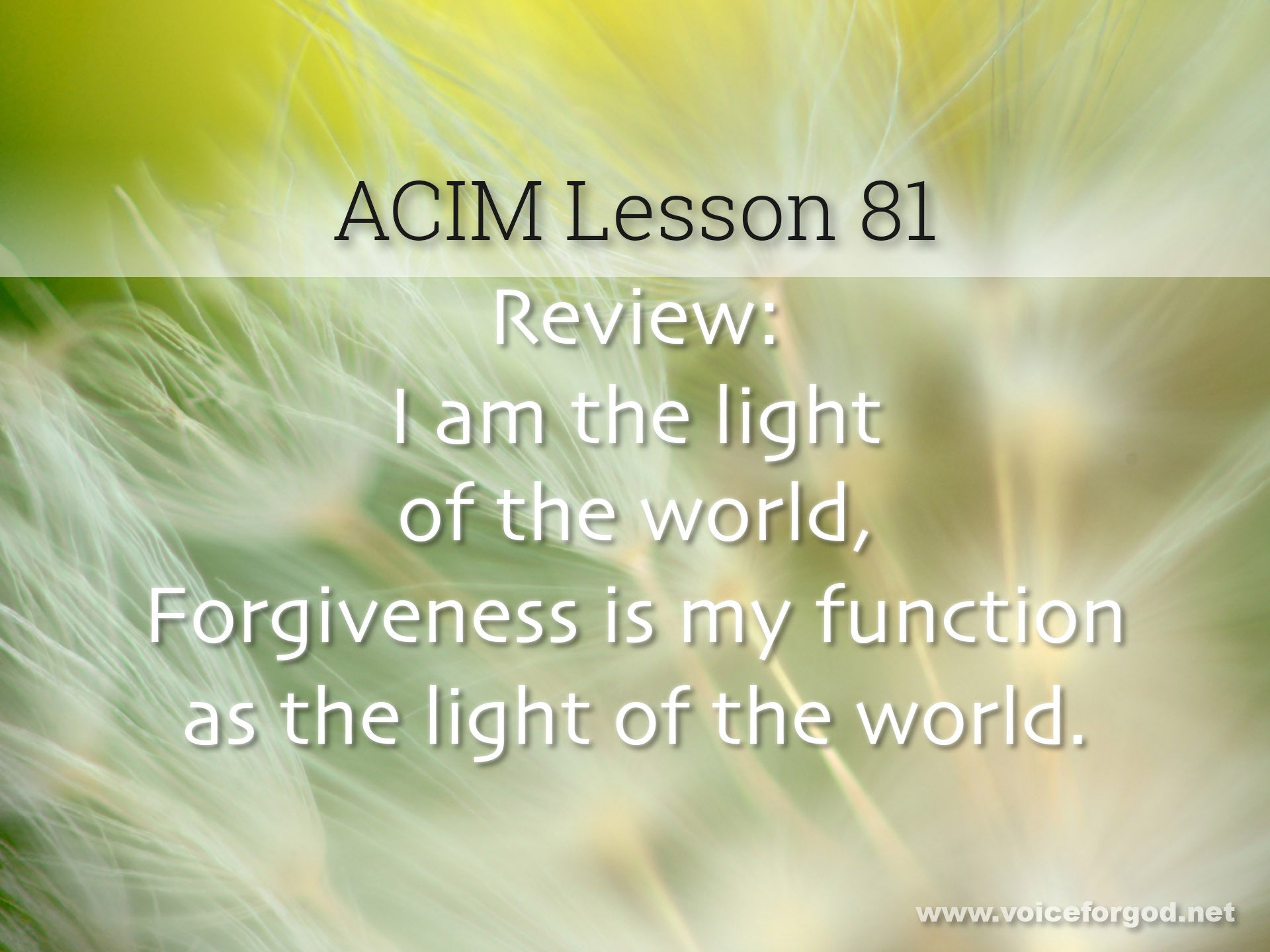 ACIM Lesson 81 - A Course in Miracles Workbook Lesson 81