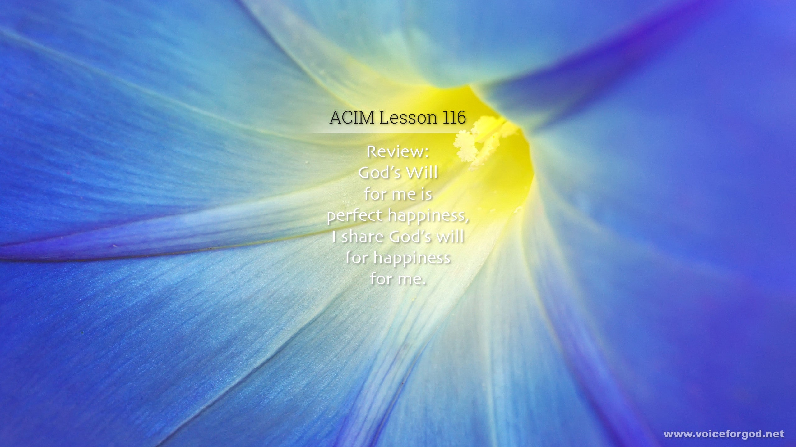 ACIM Lesson 116 - A Course in Miracles Workbook Lesson 116