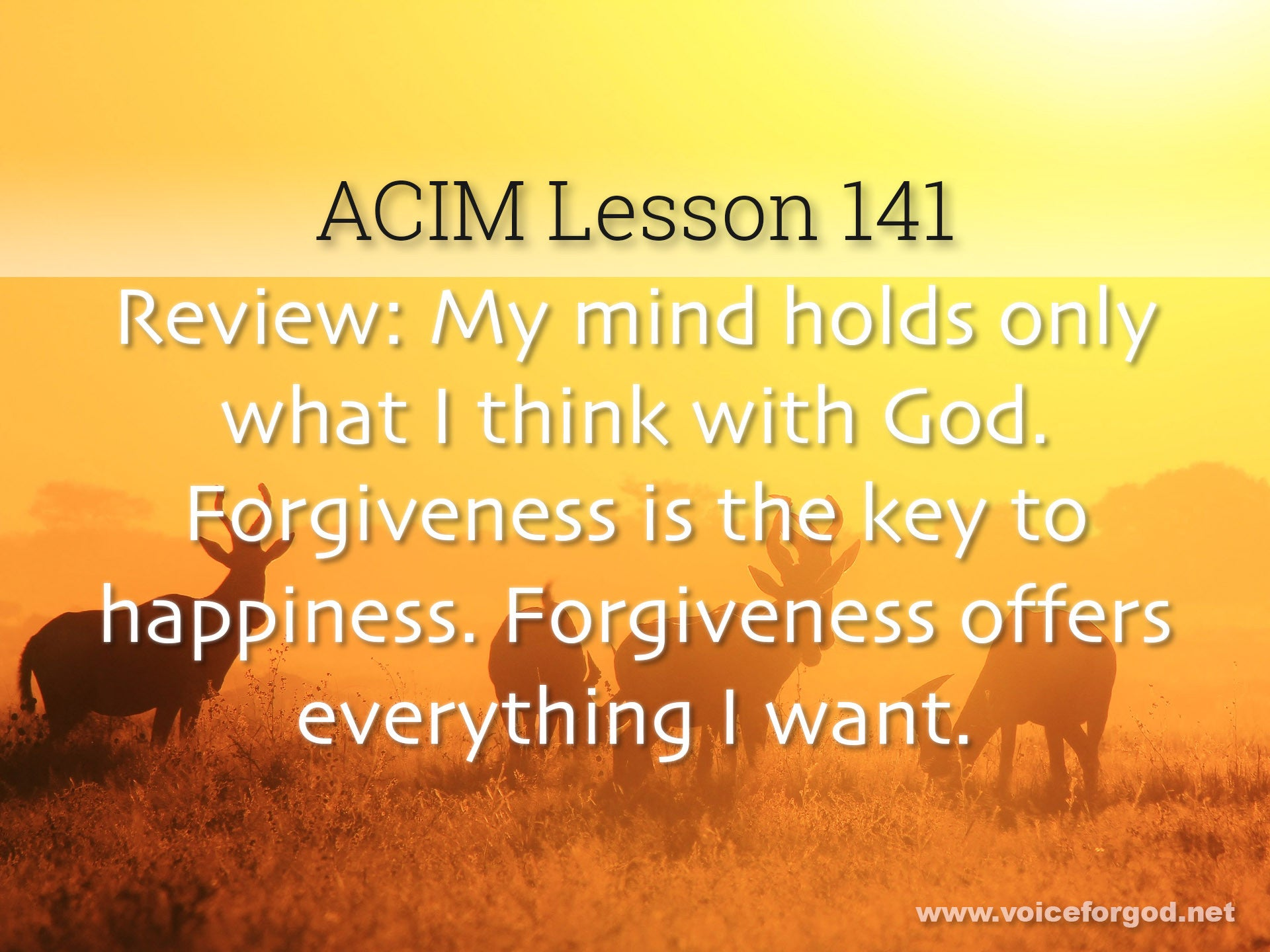 ACIM Lesson 141 - A Course in Miracles Workbook Lesson 141