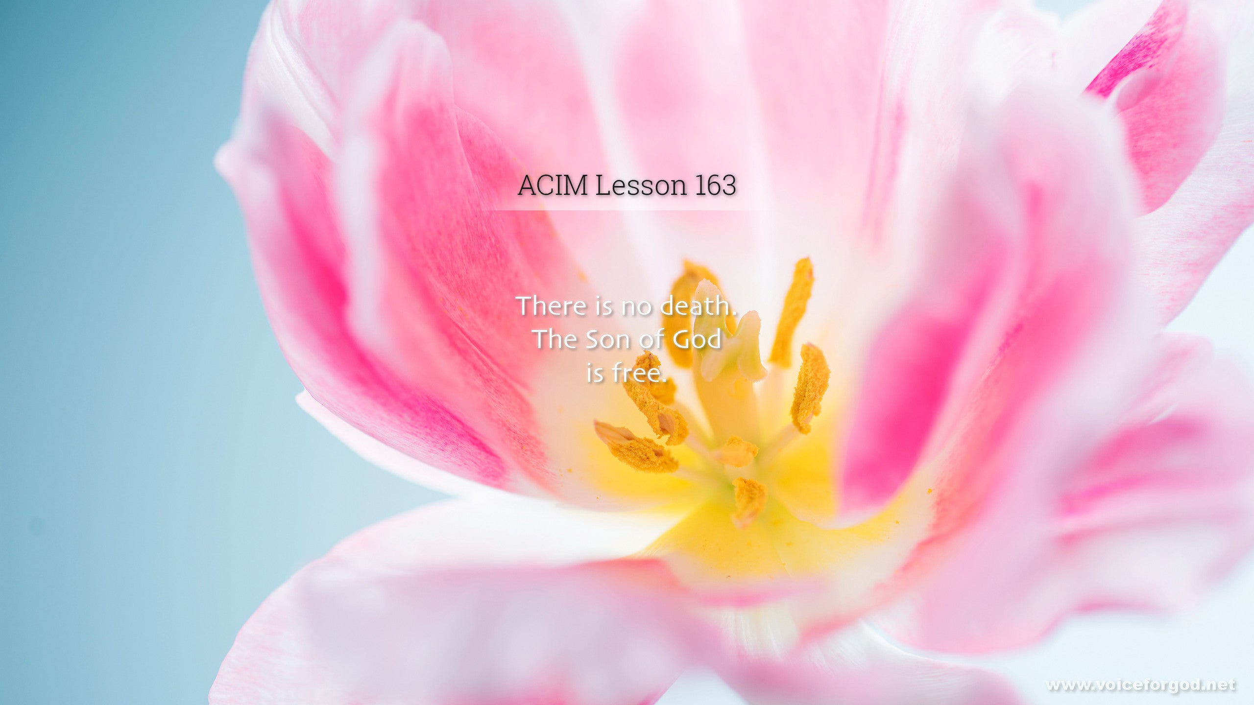 ACIM Lesson 163 - A Course in Miracles Workbook Lesson 163