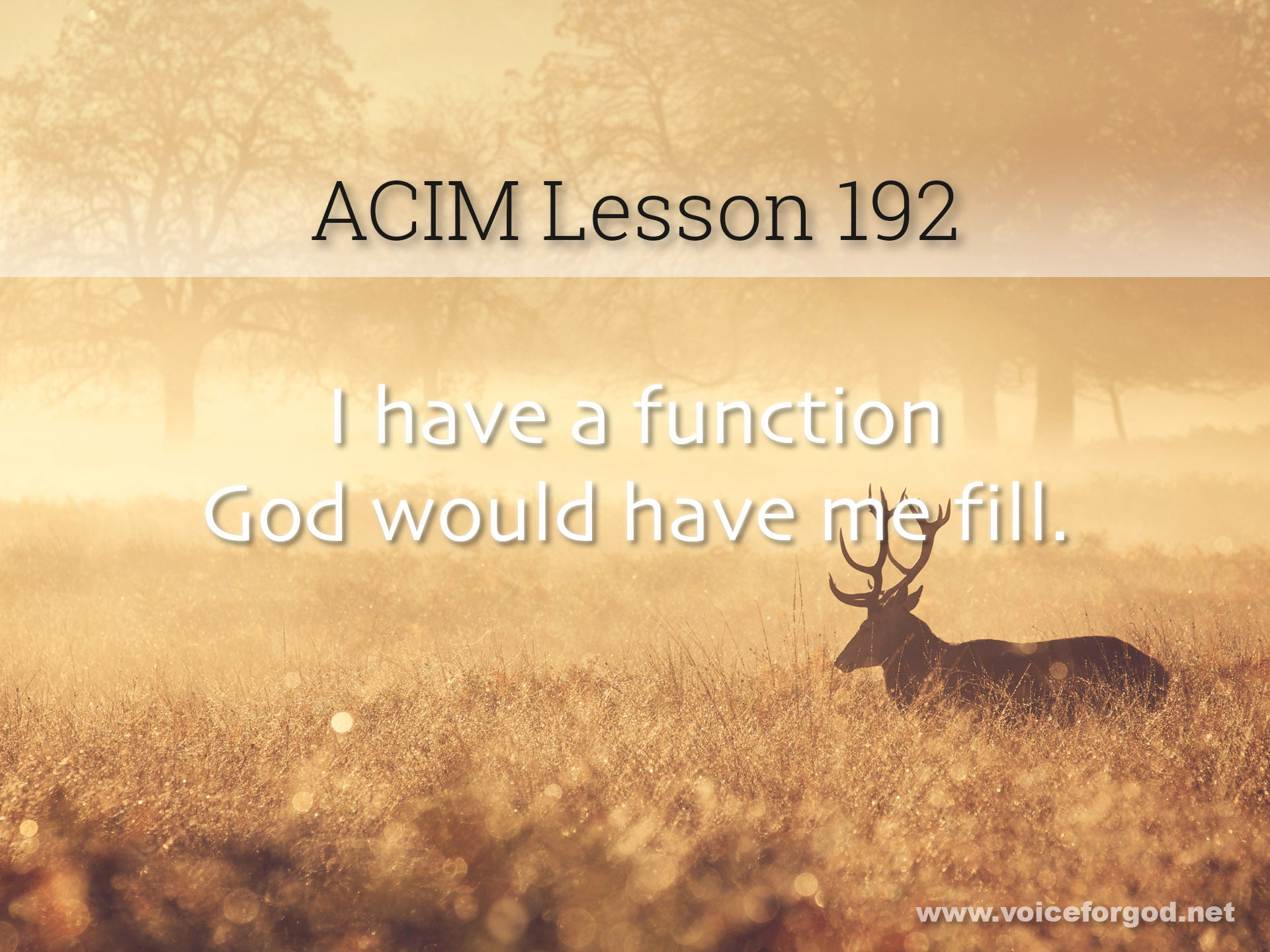 ACIM Lesson 192 - A Course in Miracles Workbook Lesson 192