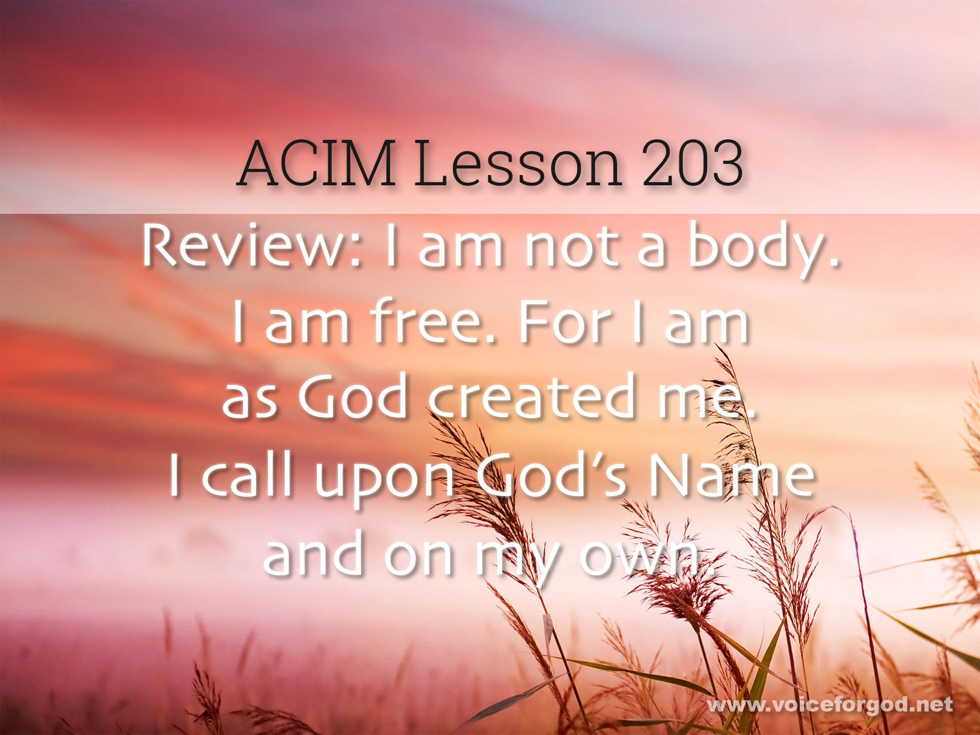 ACIM Lesson 203 - A Course in Miracles Workbook Lesson 203