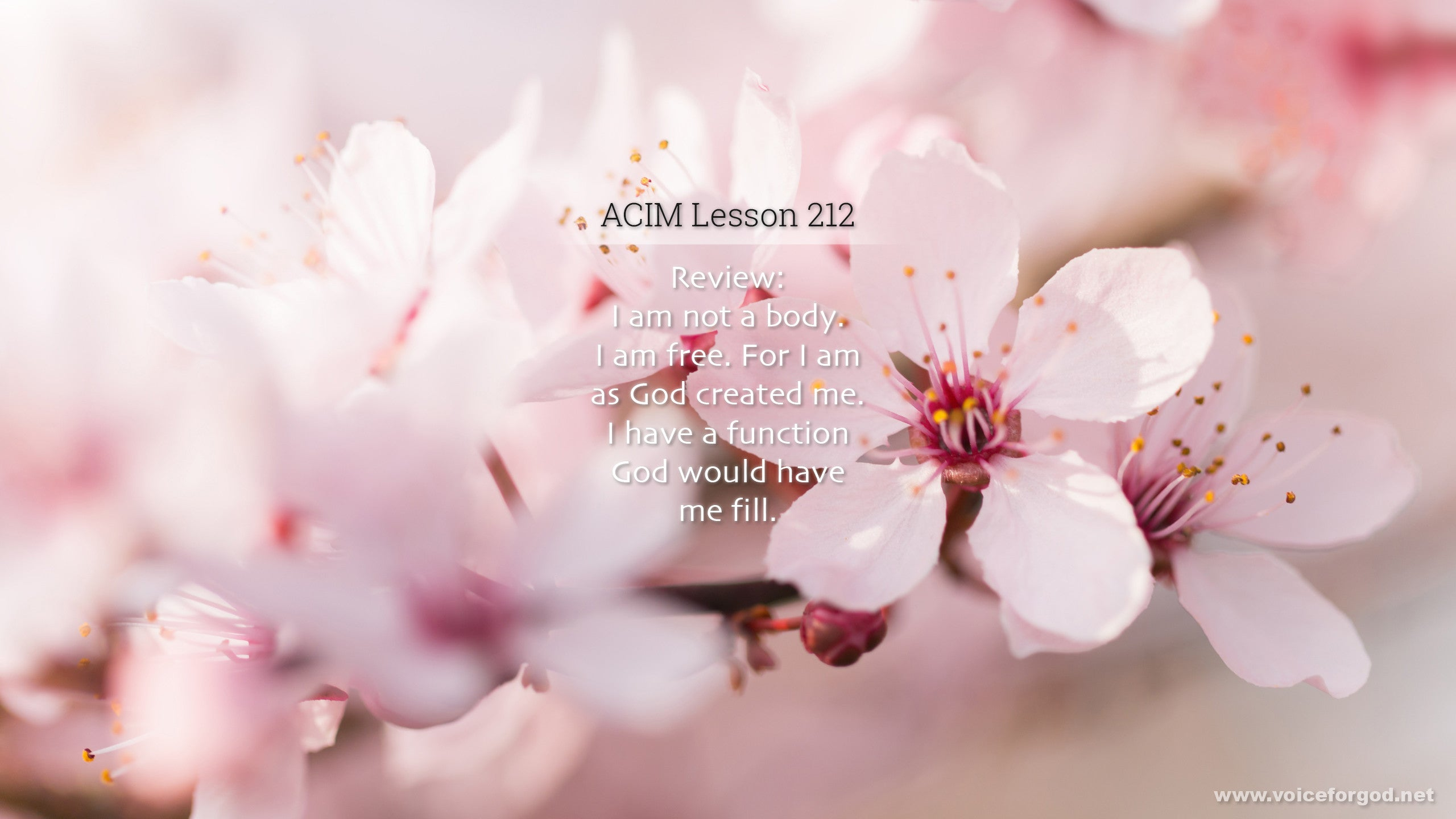 ACIM Lesson 212 - A Course in Miracles Workbook Lesson 212