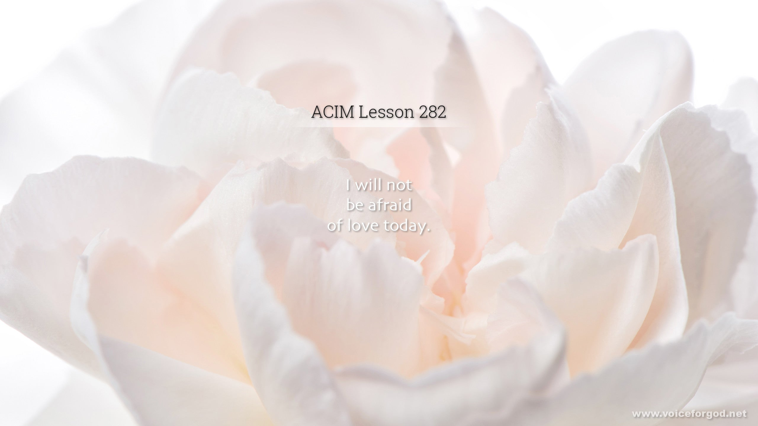 ACIM Lesson 282 - A Course in Miracles Workbook Lesson 282