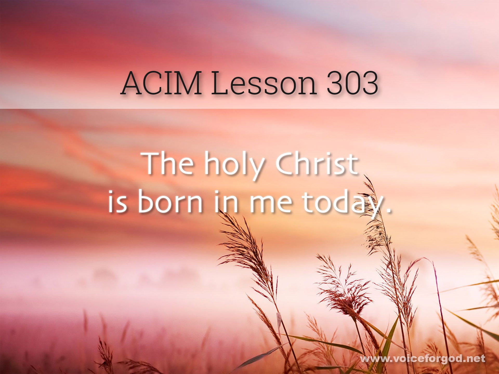 ACIM Lesson 303 - A Course in Miracles Workbook Lesson 303