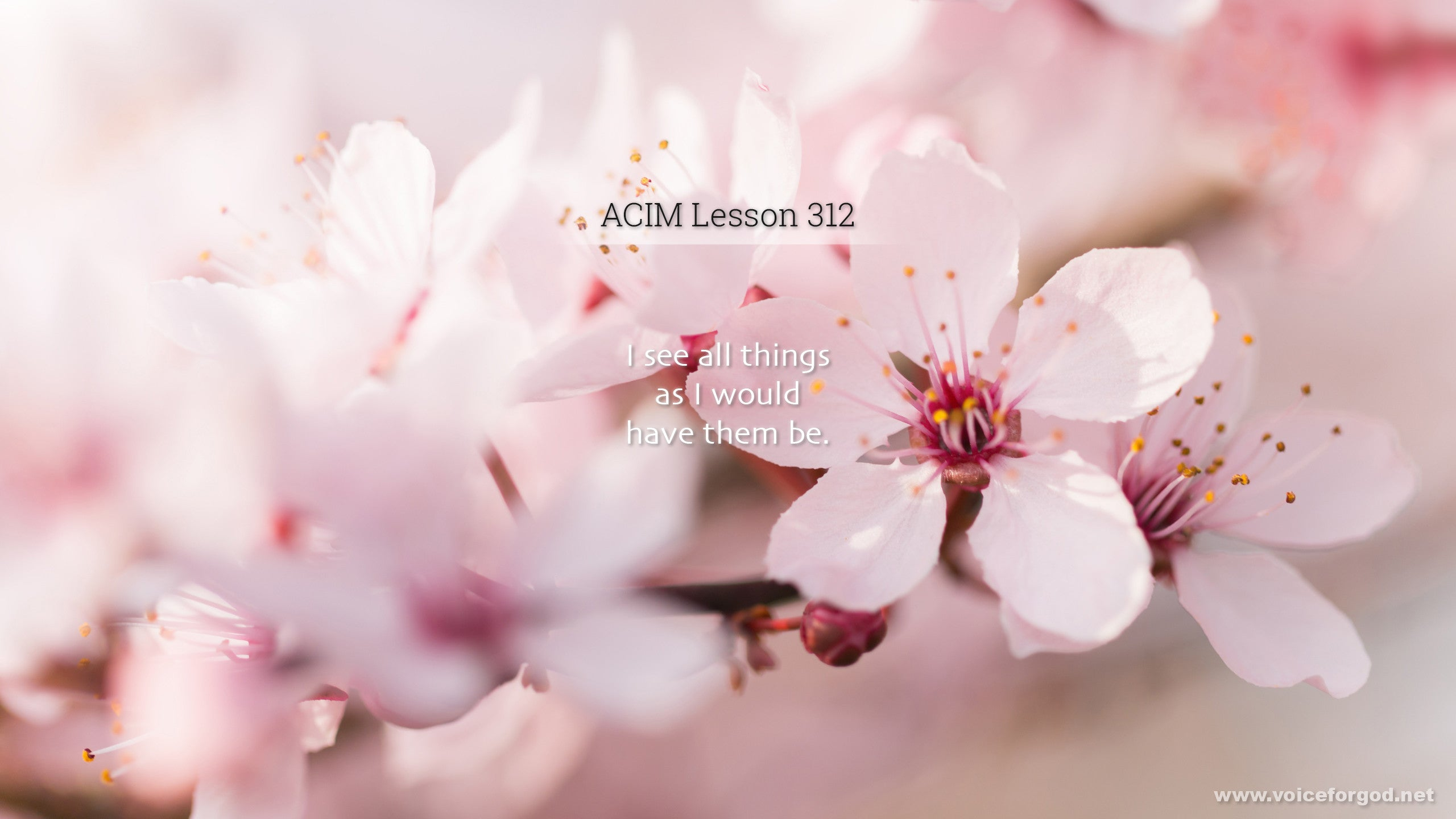 ACIM Lesson 312 - A Course in Miracles Workbook Lesson 312