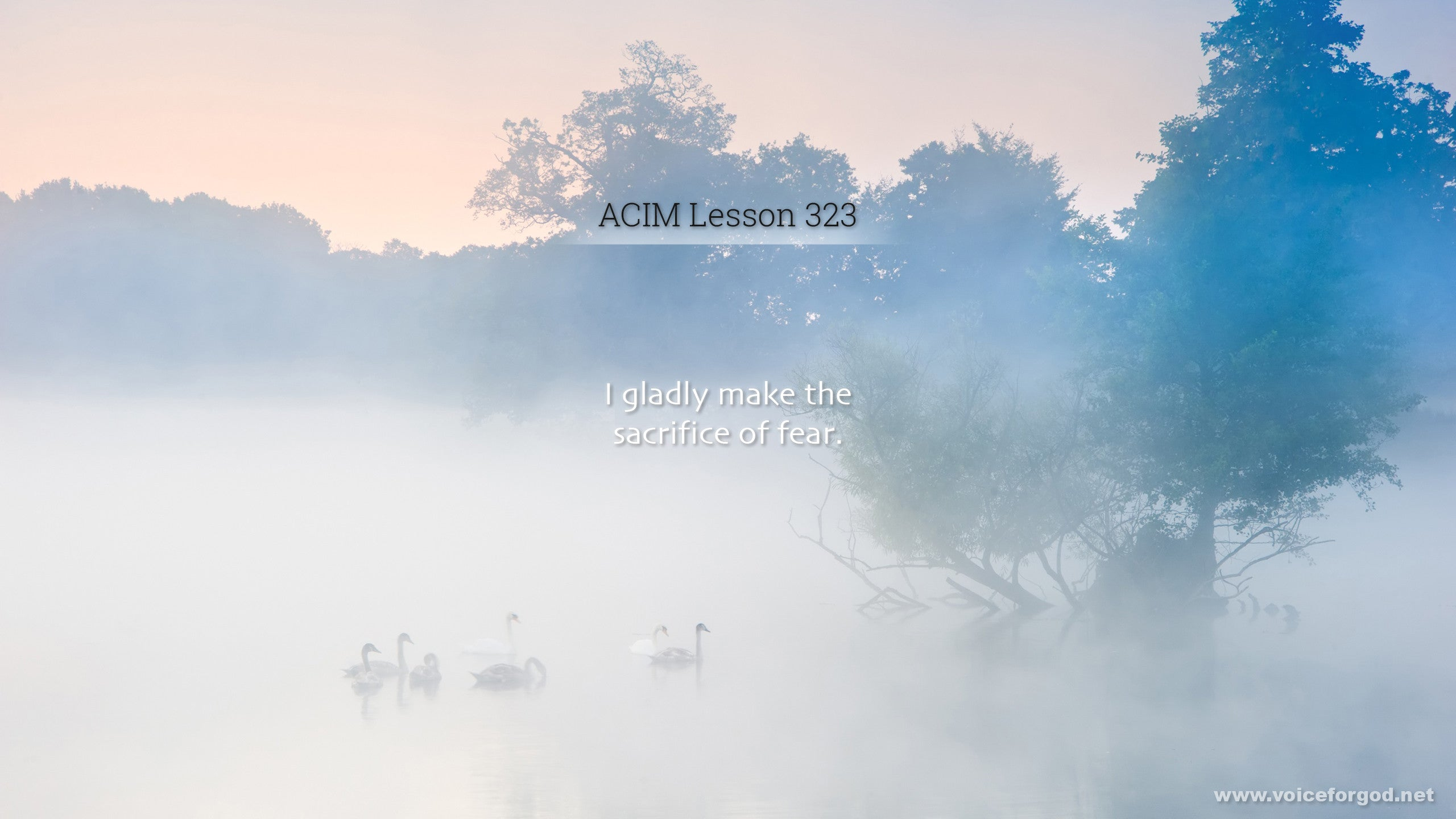 ACIM Lesson 323 - A Course in Miracles Workbook Lesson 323