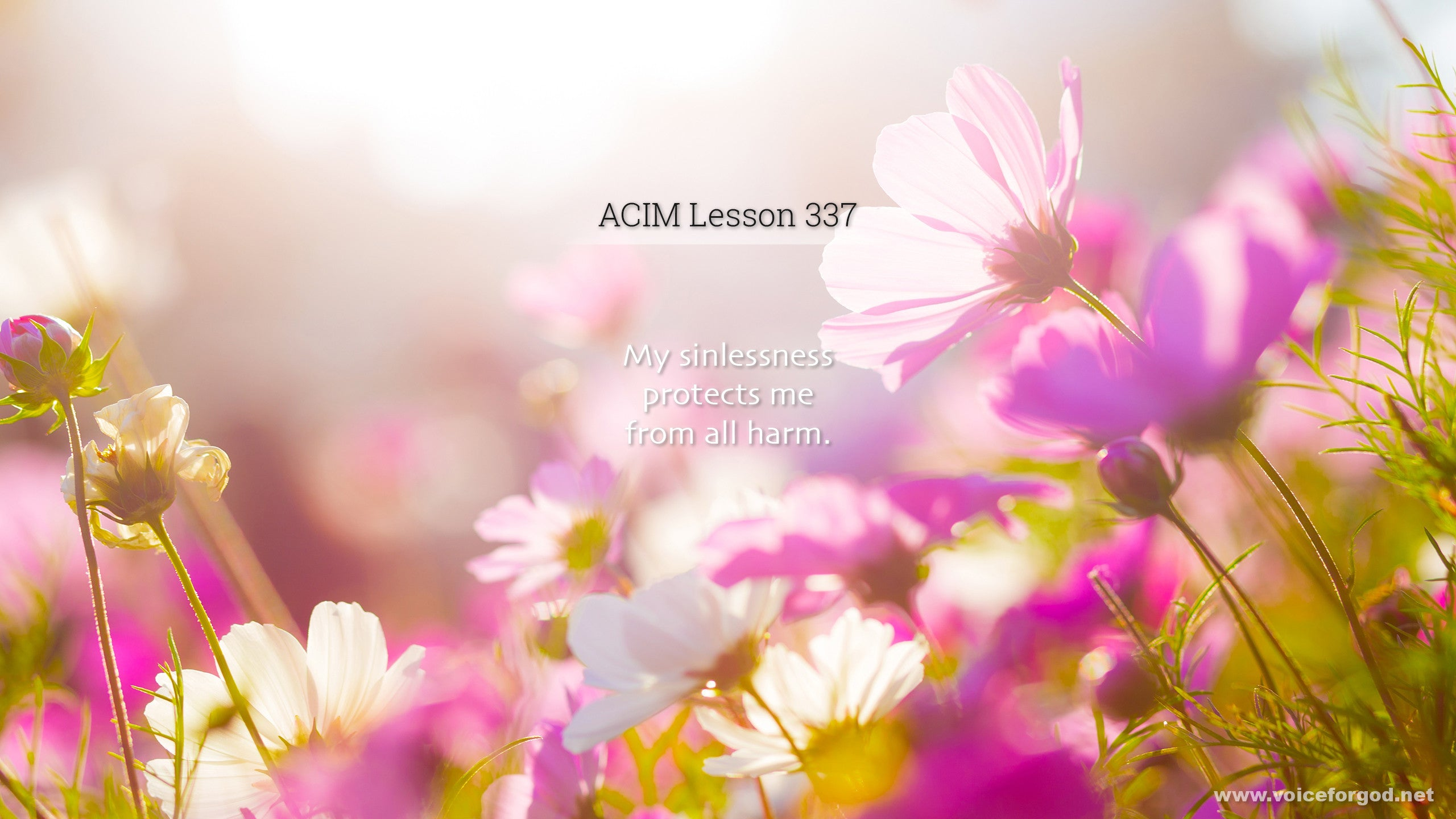 ACIM Lesson 337 - A Course in Miracles Workbook Lesson 337