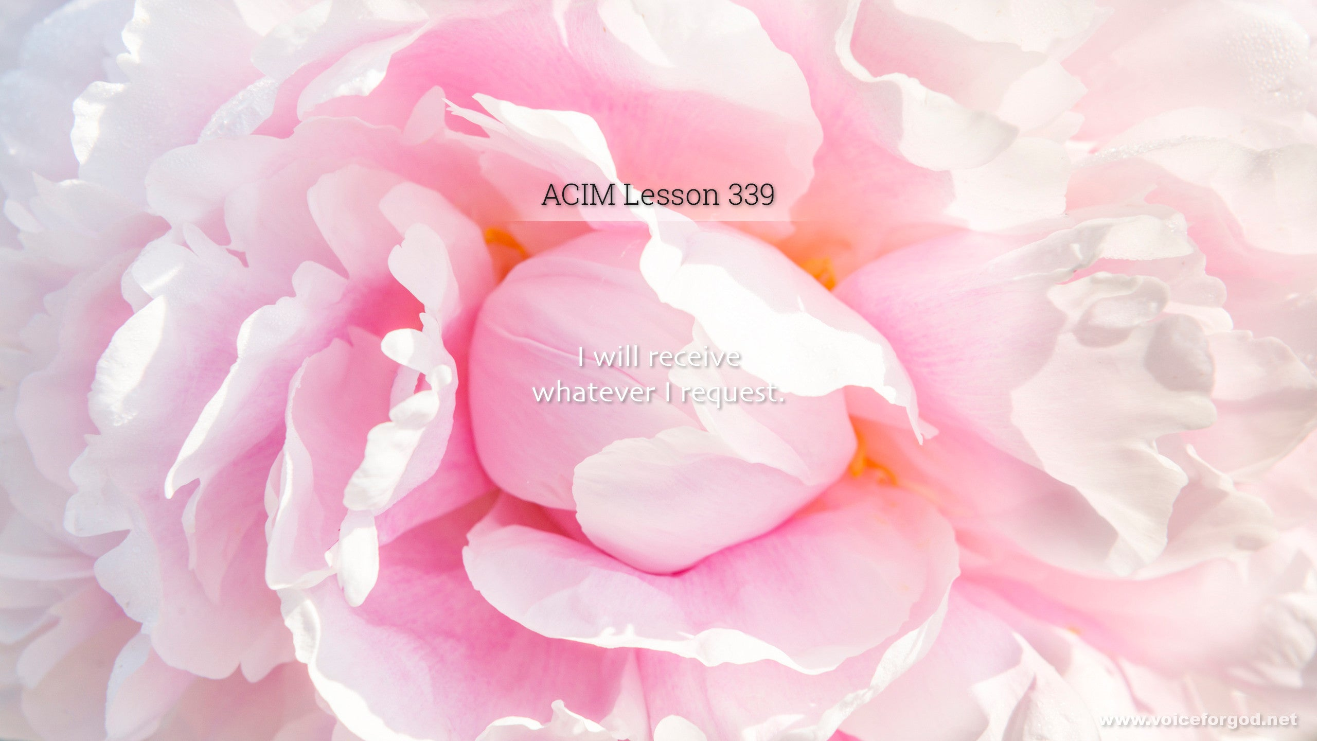 ACIM Lesson 339 - A Course in Miracles Workbook Lesson 339