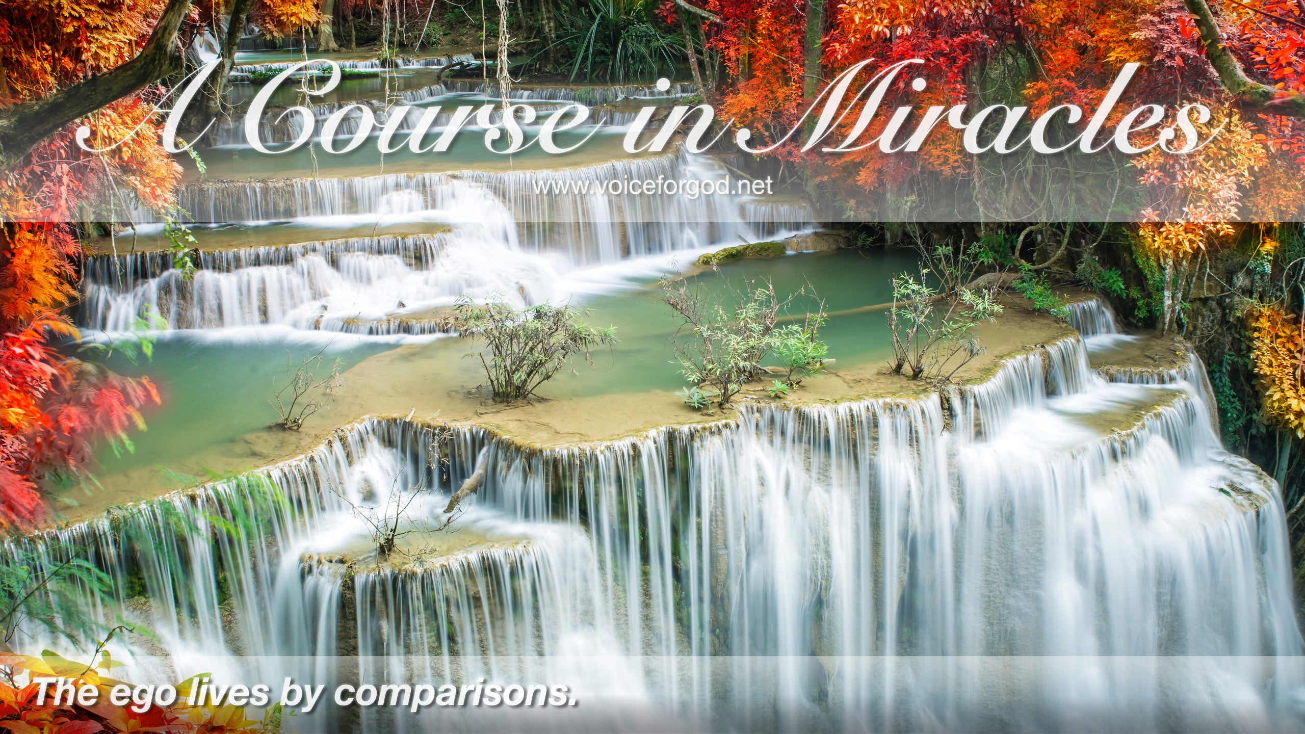 ACIM Quote 0050 A Course in Miracles Quotes