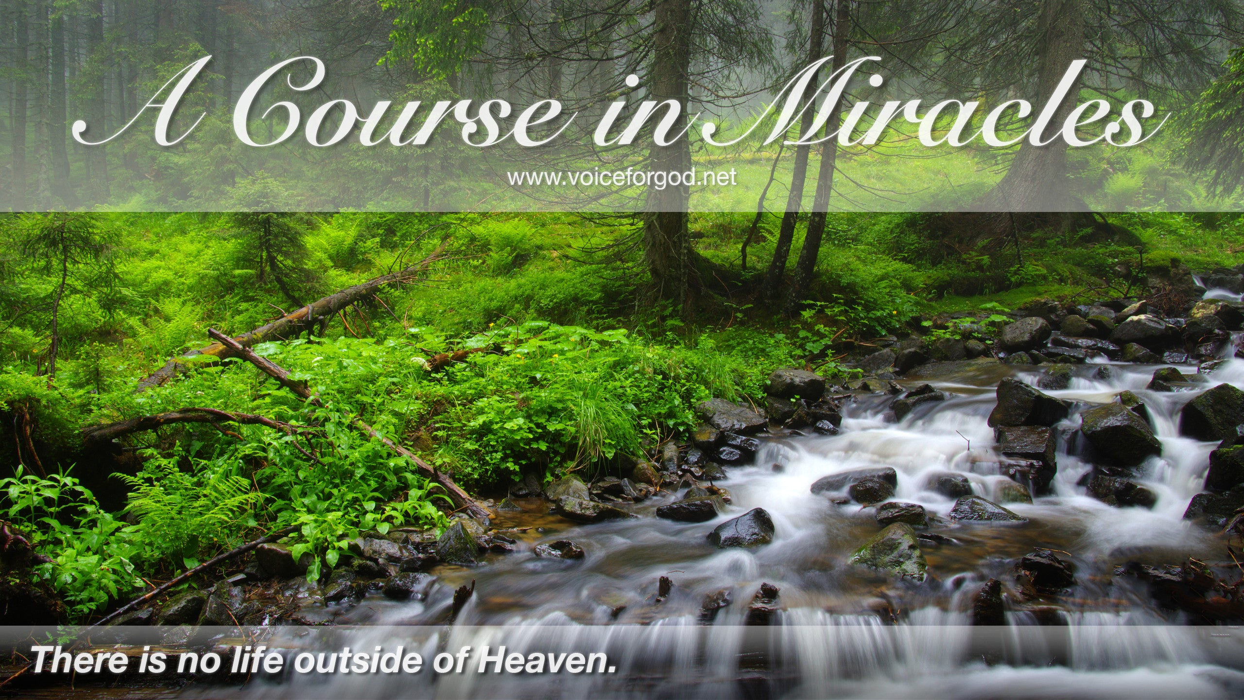 Acim Acim Quote 0098 A Course In Miracles Quotes Voice For God