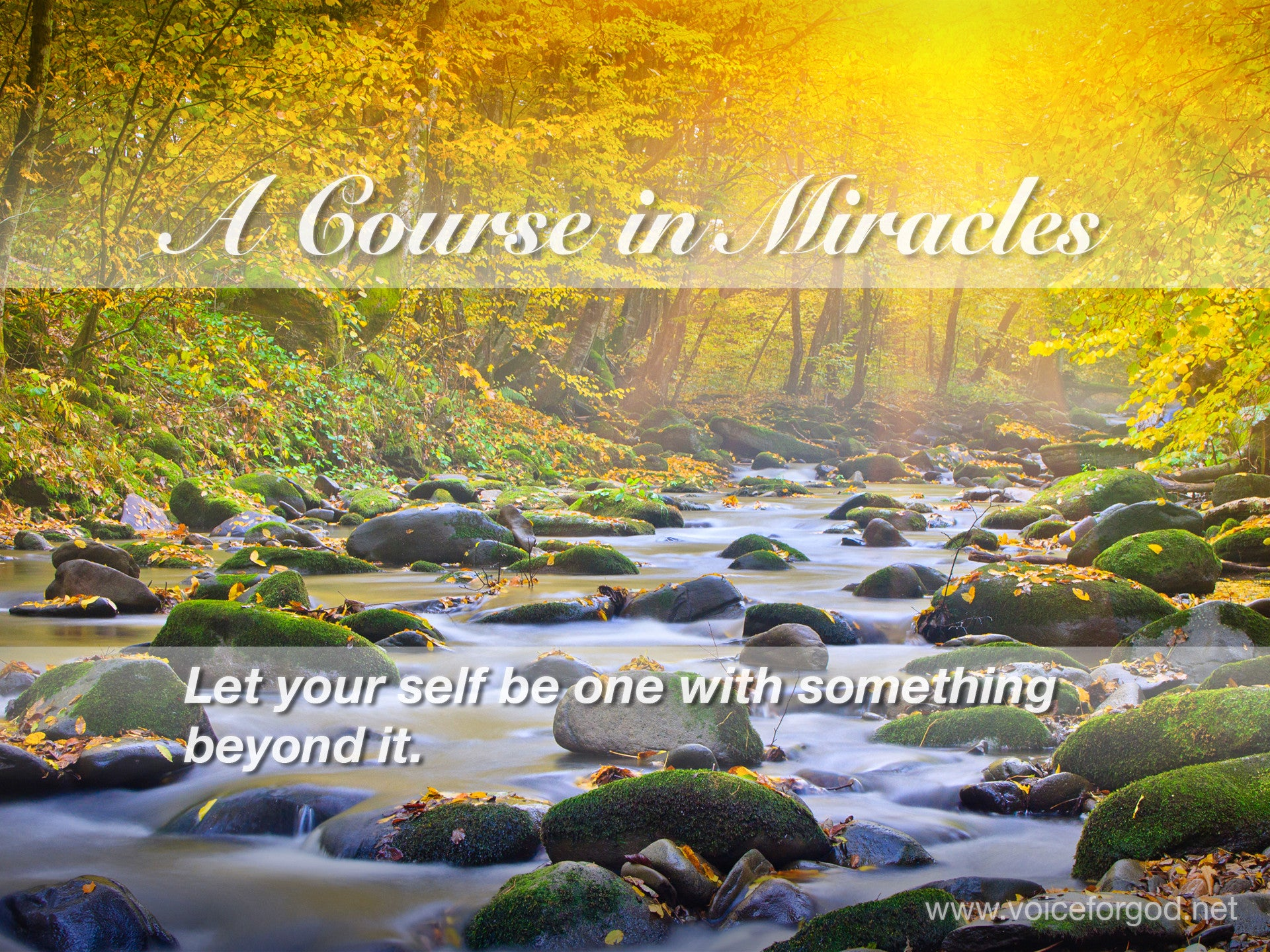 ACIM Quote 0231 A Course in Miracles Quotes