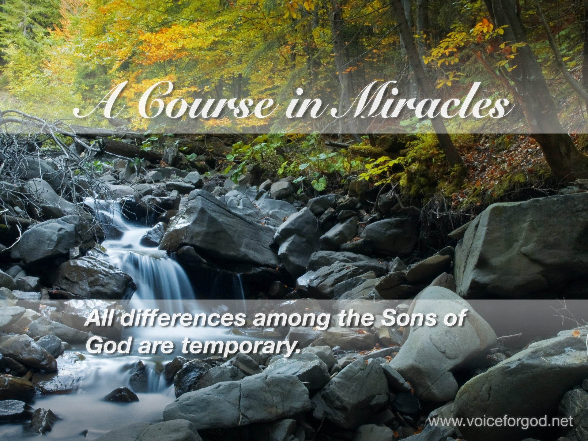ACIM Quote 0304 A Course in Miracles Quotes