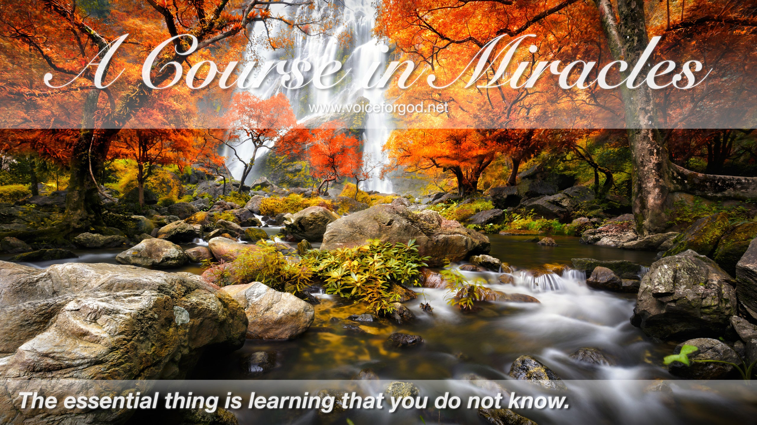 ACIM Quote 0324 A Course in Miracles Quotes