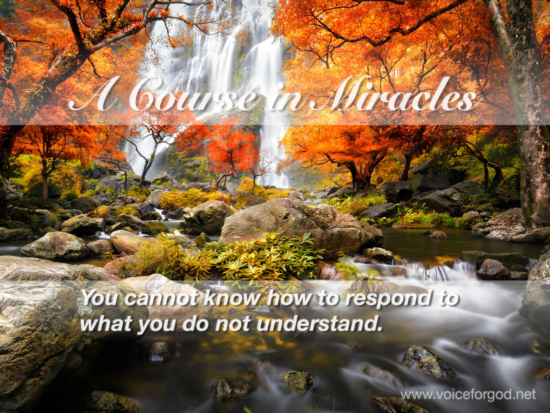 ACIM Quote 0424 A Course in Miracles Quotes
