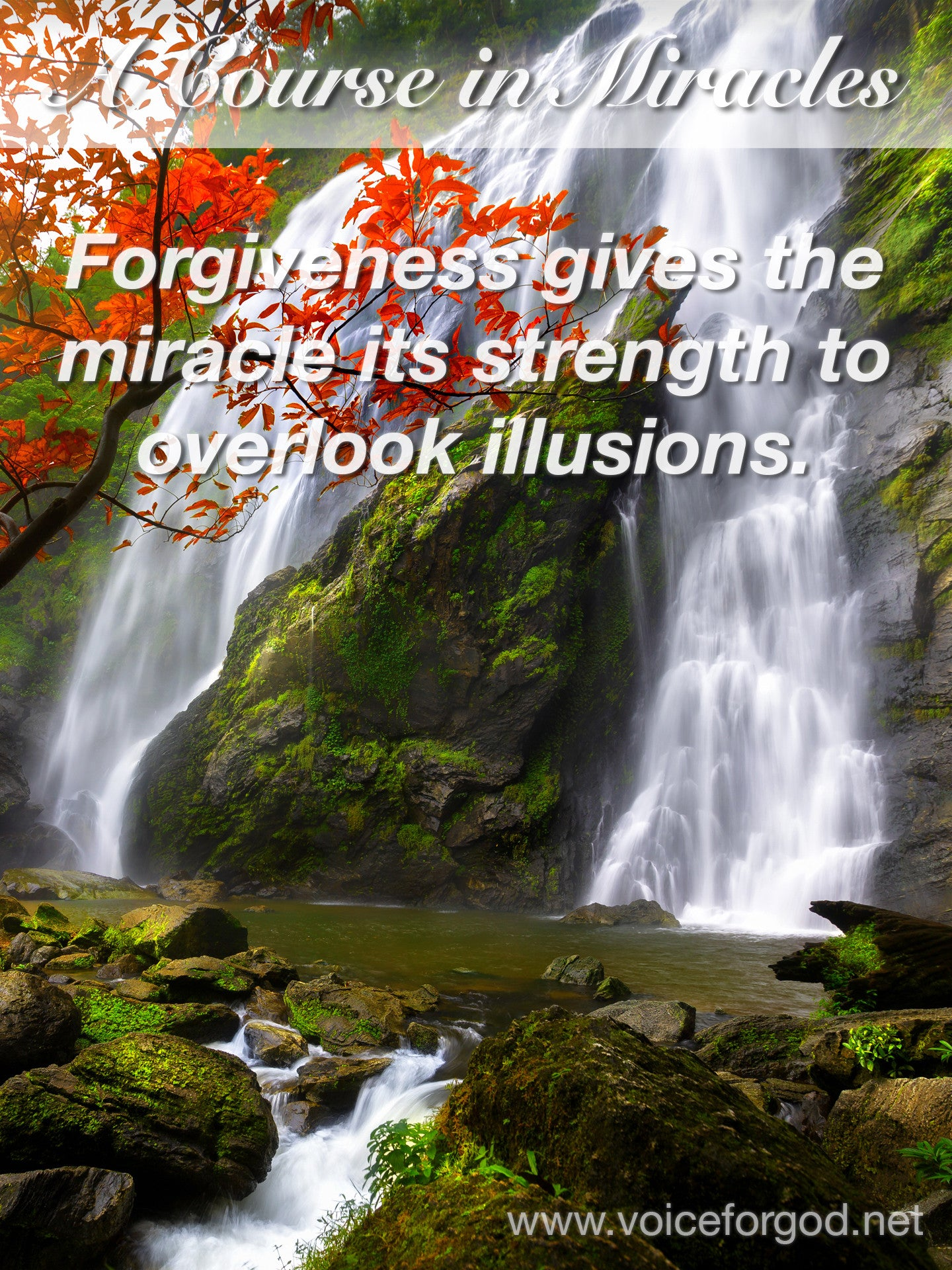 ACIM Quote 0461 A Course in Miracles Quotes