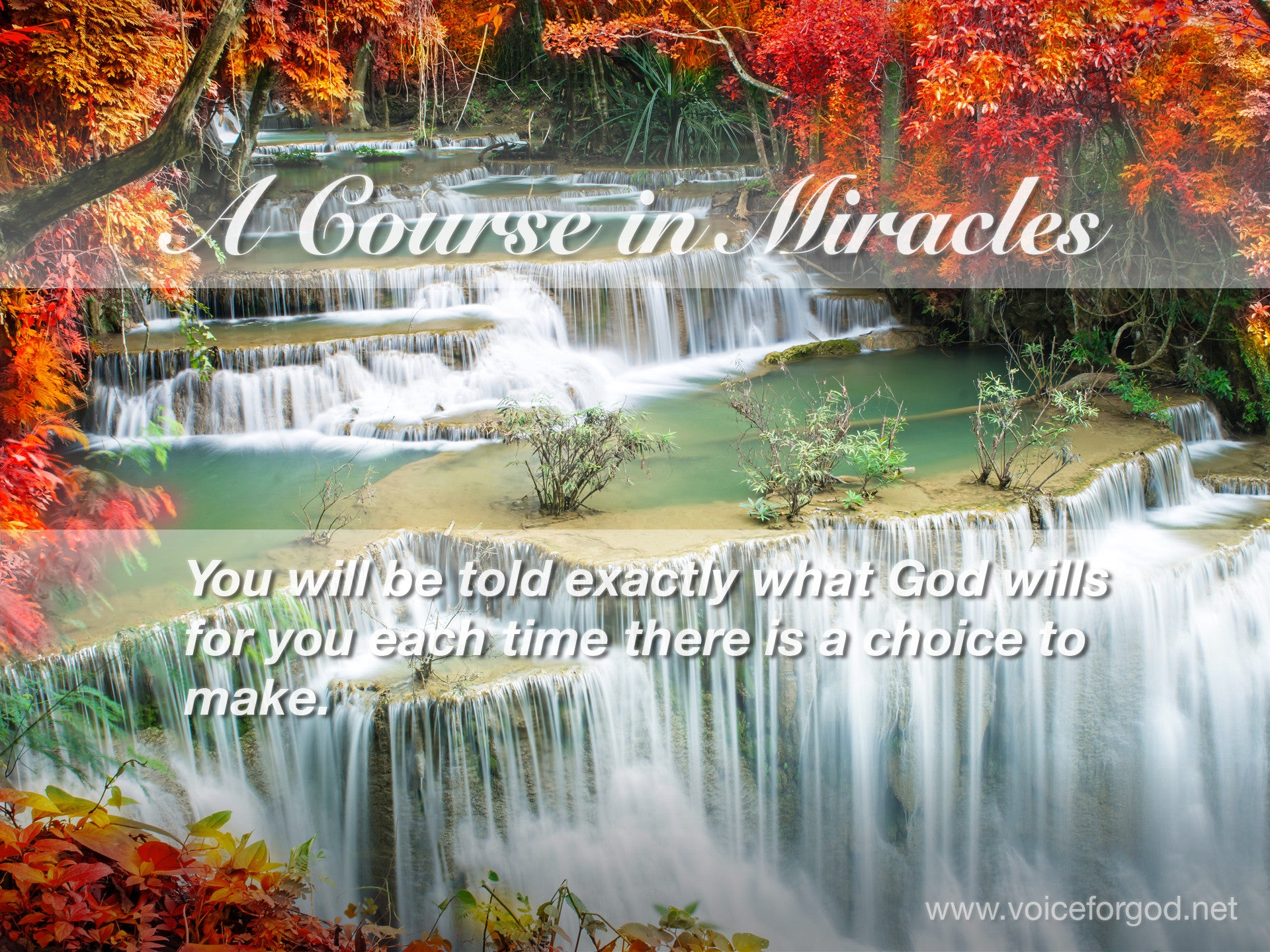 ACIM Quote 0650 A Course in Miracles Quotes