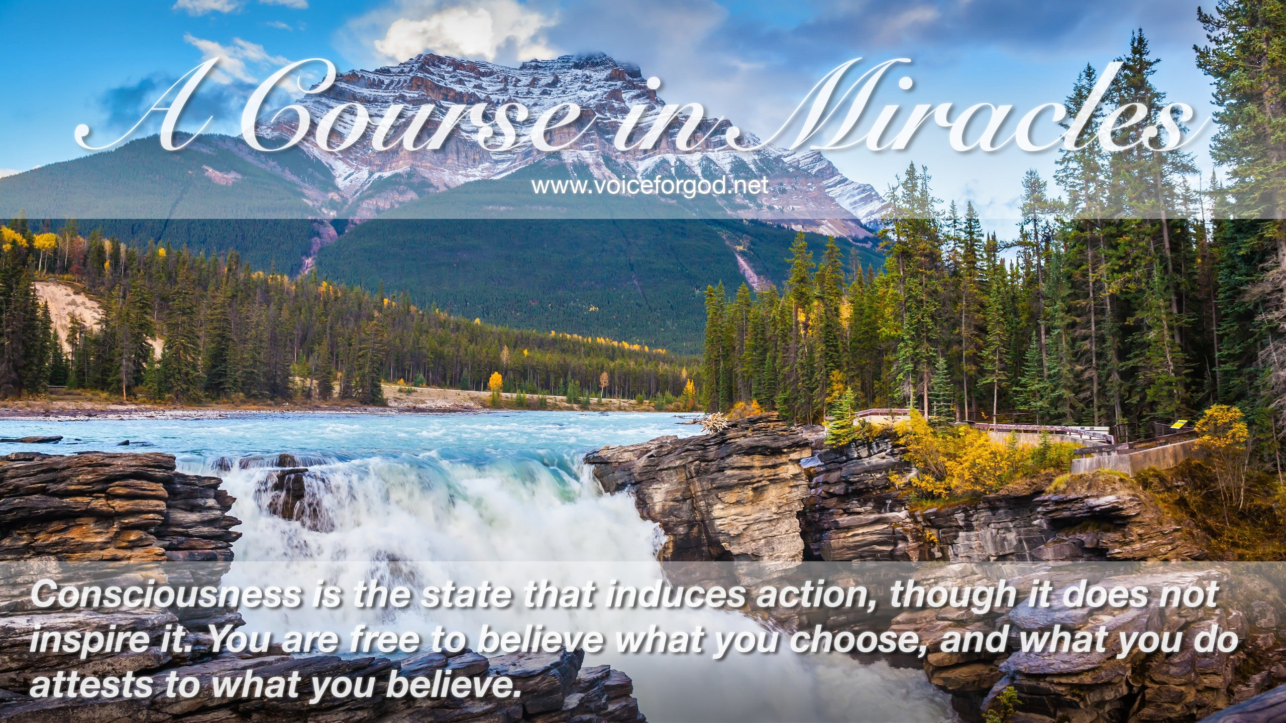Acim Acim Quote 0886 A Course In Miracles Quotes Voice For God