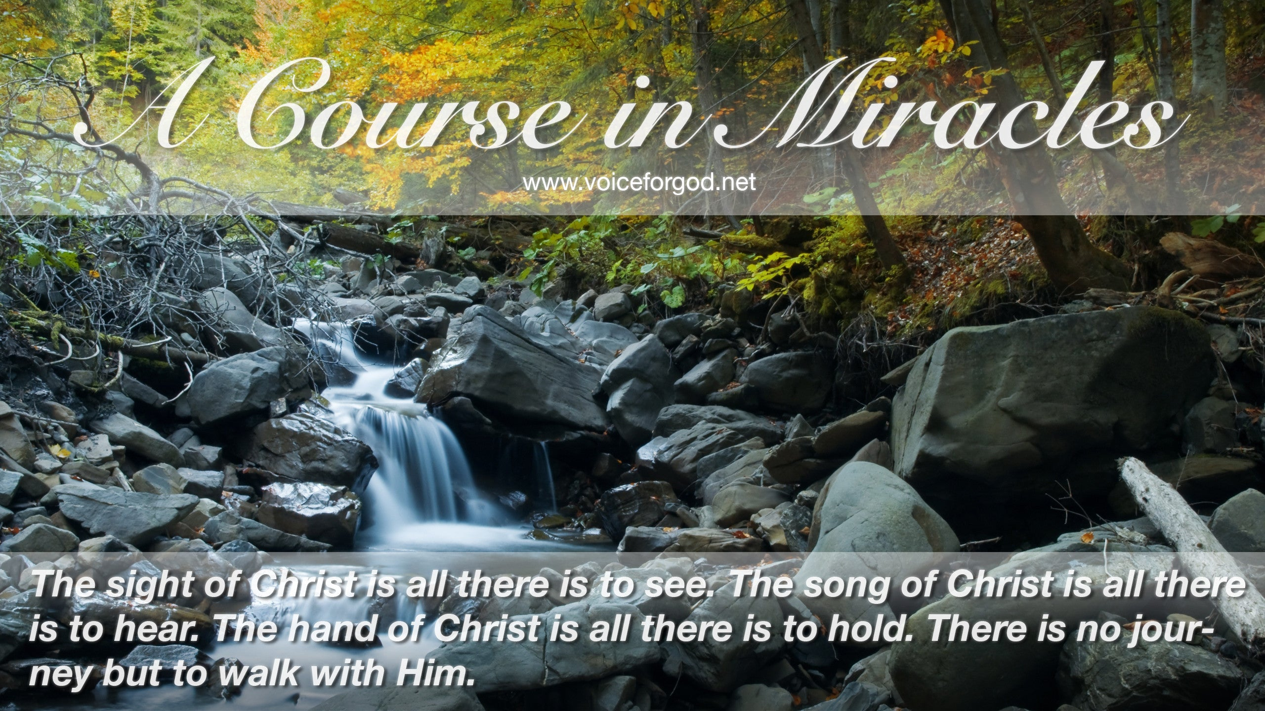 ACIM Quote 0904 A Course in Miracles Quotes