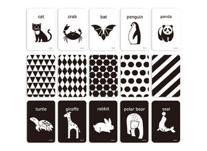 Black and White: Cognitive Flash Cards