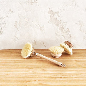 Wooden Dish Brush (40mm head)