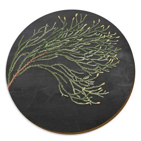 Rimu Red Pine Placemat