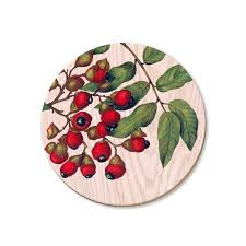Titoki Berries Coaster