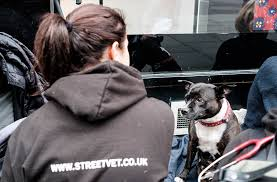 StreetVet at work with homeless people