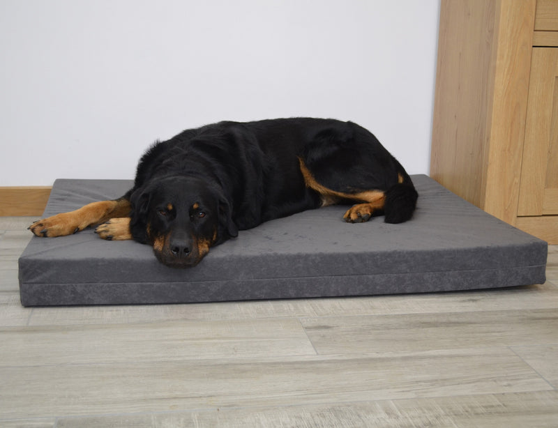 Orthopaedic Dog Beds - Big Dog Bed Company