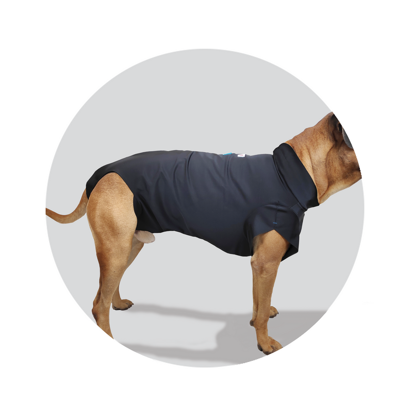 Full body cover to protect bandages, injuries or skin abrasions on dogs