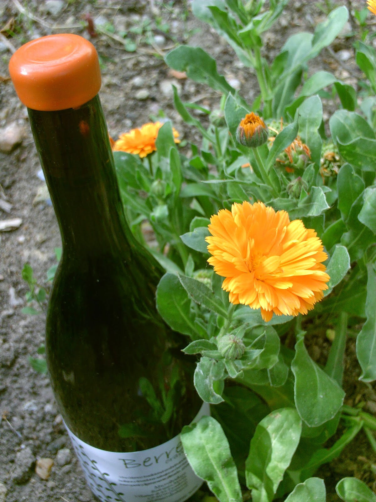 Berretes Orange Wine (Zamora)