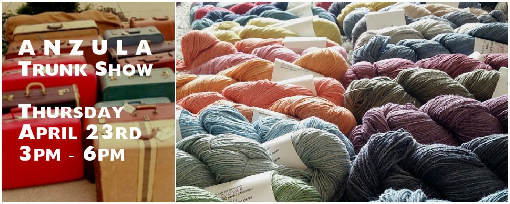 Anzula Hand Dyed Yarn Trunk Show