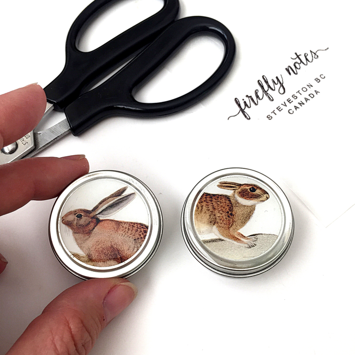 Firefly Notes Set of Round Bunny Tins