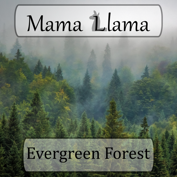 Evergreen Forest-Limited Edition