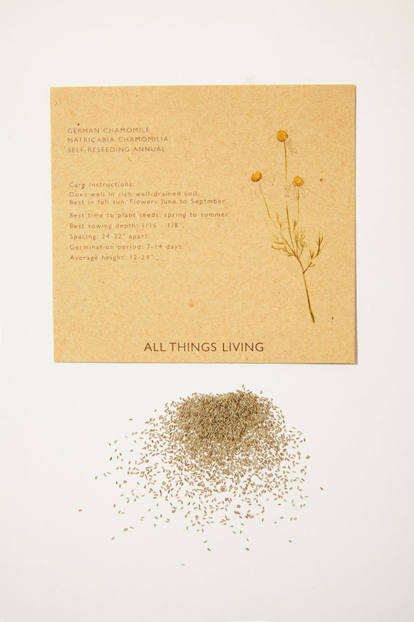 German Chamomile Seeds