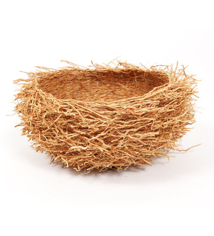 Vetiver Birds Nest