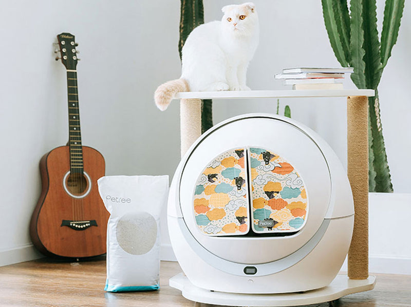 8 Best Self Cleaning Cat Litter Boxes 2020
