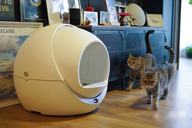 Petree Automatic Smart Cat Litter Box Review