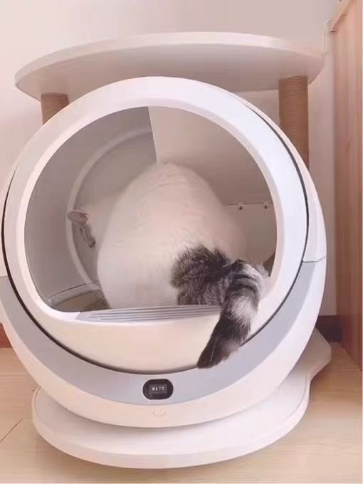 Self Cleaning Litter Box For Multiple Cats and Large Cats