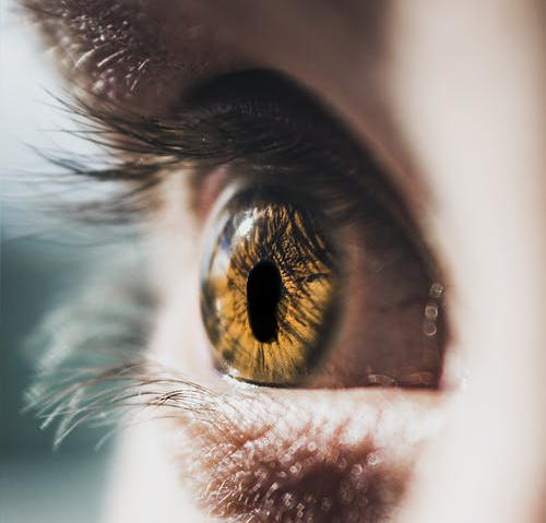 What Is Coloboma and How it Can Affect Your Vision?