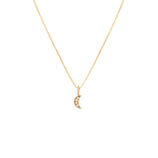 Load image into Gallery viewer, Pave Moon Pendant - 10k Solid Gold