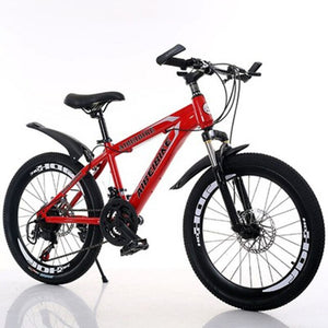 Student Adult Bicycle 24 Speed Two Disc Brake Shock Absorber 26 Inch Mountain Bike