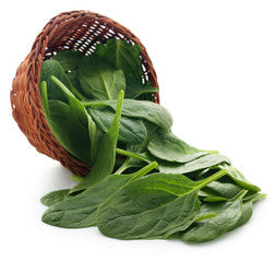 Baby Spinach - 125gm Pack