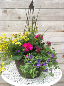 "13"" Hanging Basket Bidens Sun Mix"