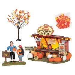 Patty's Pumpkin Patch Set of 4