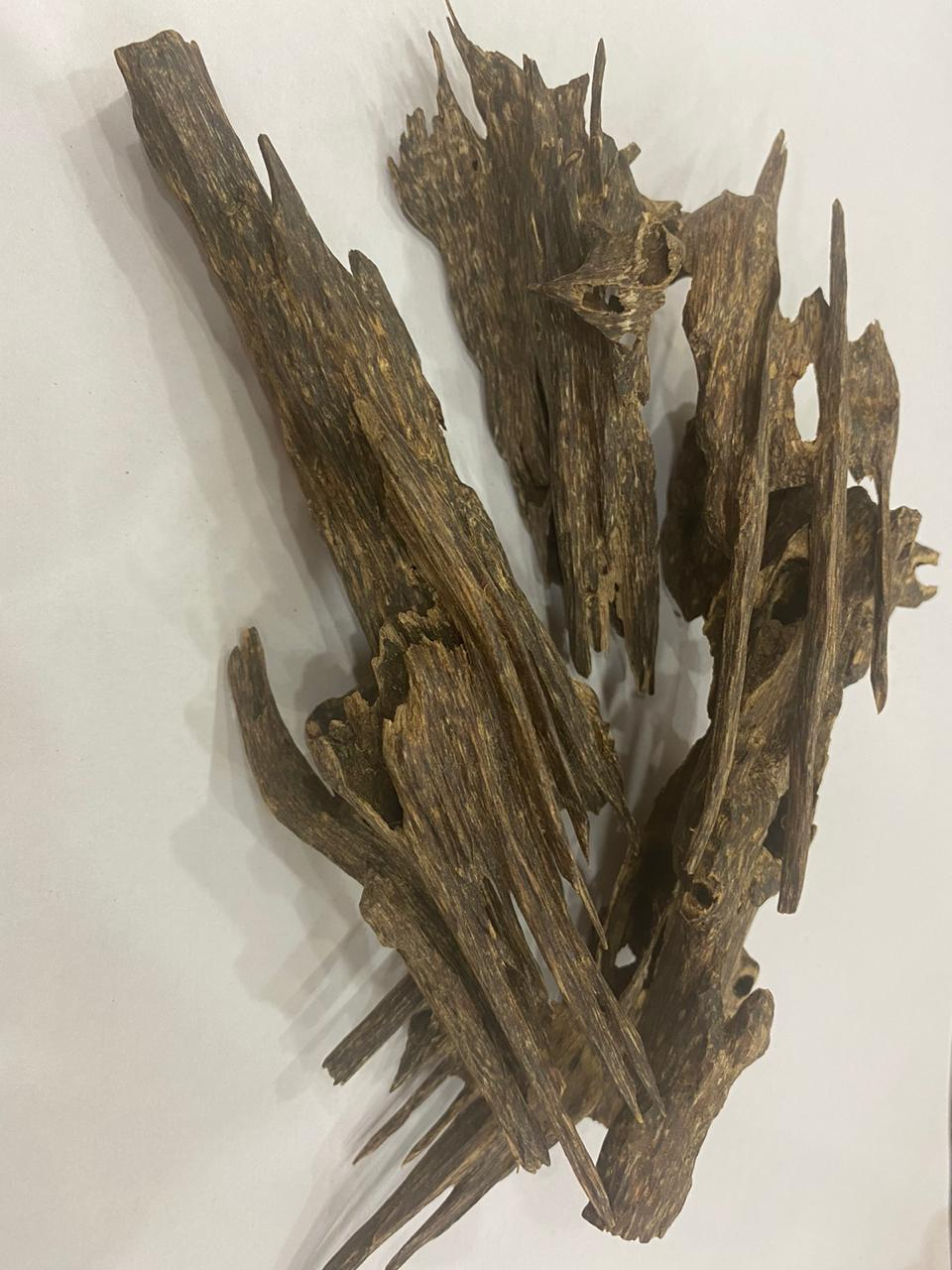 Luxury Oudh - agarwood oil india