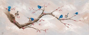 FAIRY WREN, VENTURES - FINE ART PRINT